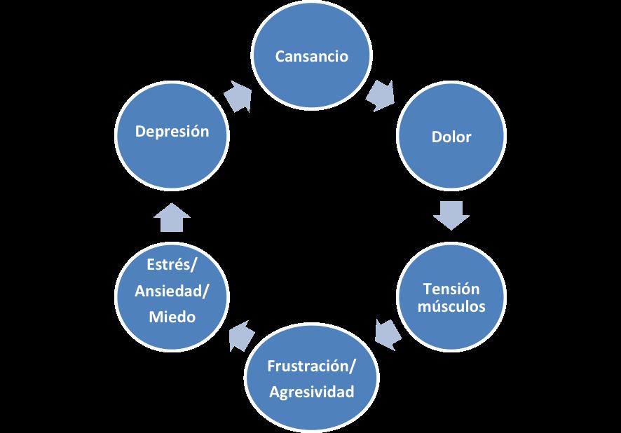 medicina del dolor. ciclo del dolor.